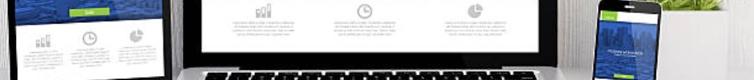 Sitios Web DDCT
